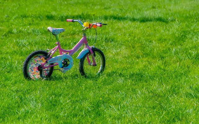 rowerek biegowy dla 2 latka
